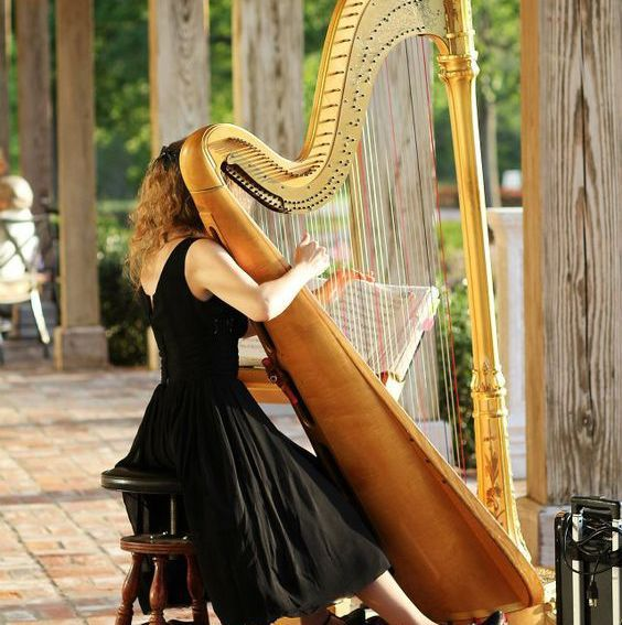 Stringed Instruments: How to tune them?